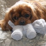 Charlie Beau with toy