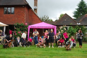 Cavalier Party in Oxted