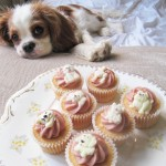 Hazel and the Pupcakes
