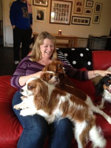 A Smother of Cavaliers