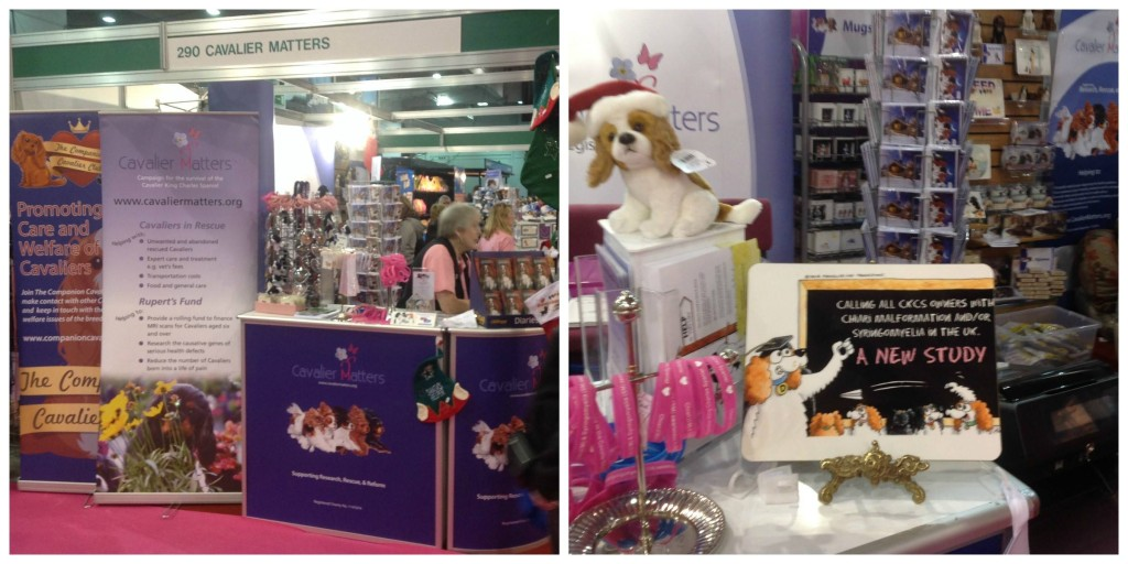 Discover Dogs 2013