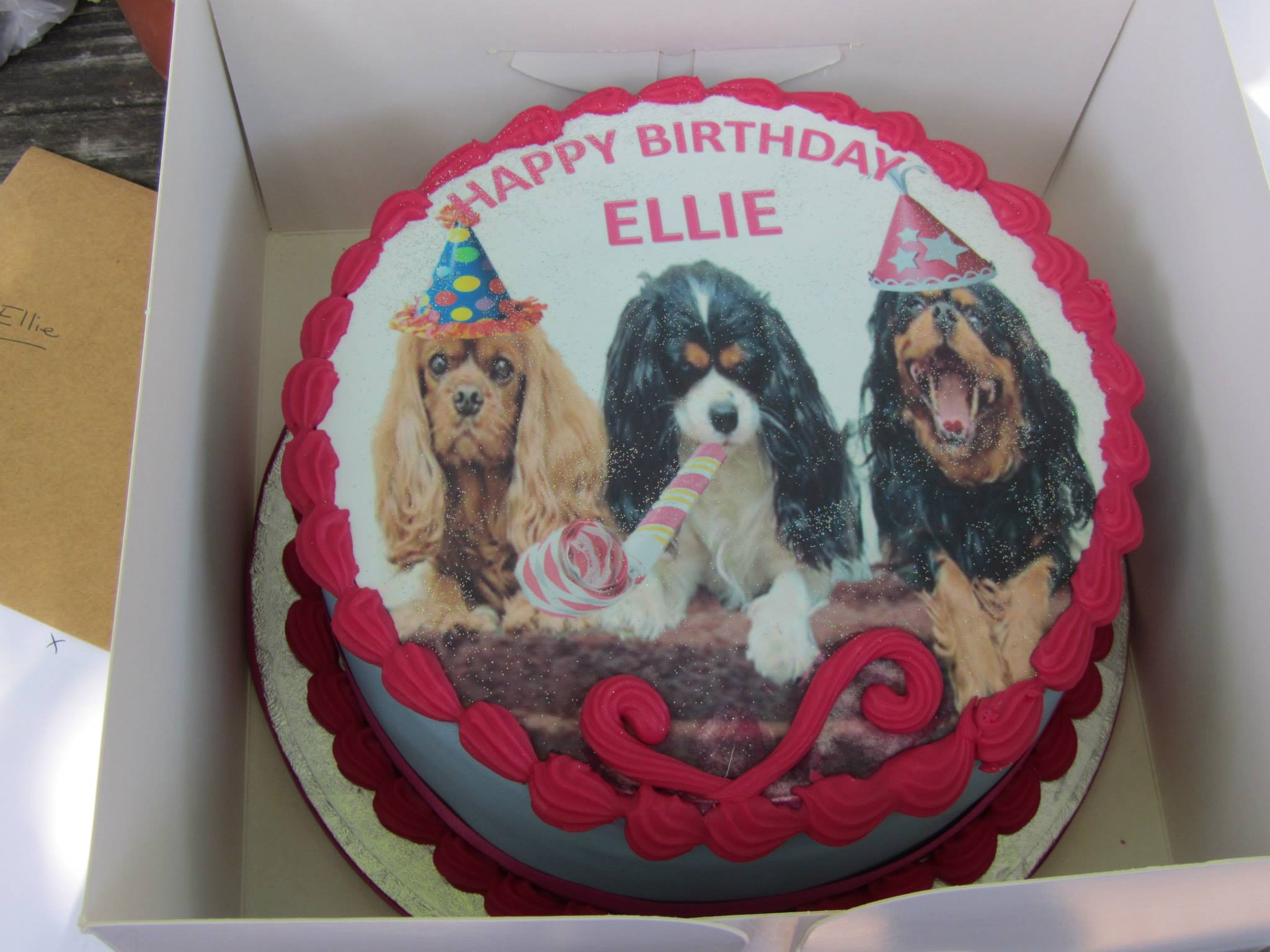 June 1st 2013 Meet up birthday cake The Companion Cavalier King