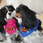 Oscar & Pippa