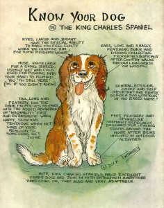 Know Your Cavalier by Dick Twinney