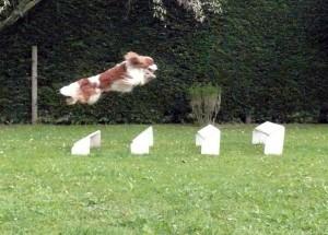 Billy  - Long jump 9.13